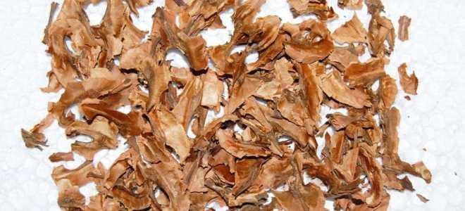Как настаивать самогон на перегородках грецкого ореха: рецепт с пропорциями