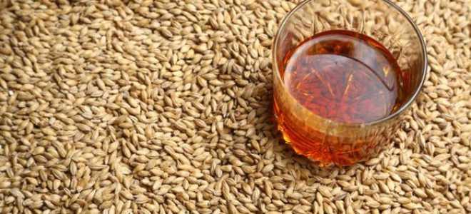 Готовим брагу из солода для виски в домашних условиях