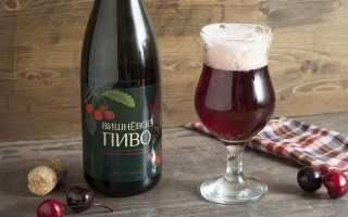 Подборка интересных производителей вишневого пива, которых стоит попробовать