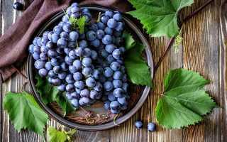 Технология изготовления самогона на основе браги из винограда в домашних условиях