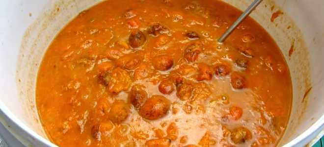 Простой рецепт браги для абрикосового самогона