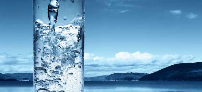 Выбираем идеальную воду для браги