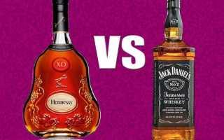 В чём отличия между коньяком и виски, какой из этих алкогольных напиток предпочтительнее пить