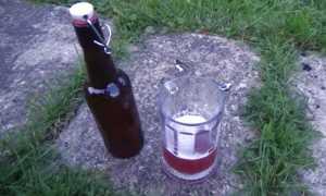 Рецепт настоящего вишневого пива в домашних условиях