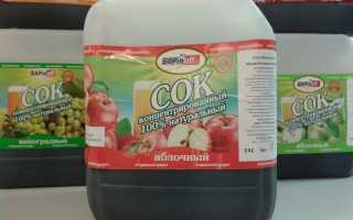 Как правильно поставить брагу из концентрированного сока и перегнать её в самогон