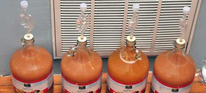 Как приготовить прекрасную брагу для яблочного самогона в домашних условиях