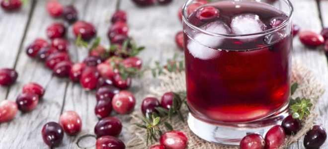 Как правильно настаивать клюкву на водке, самогоне и спирте