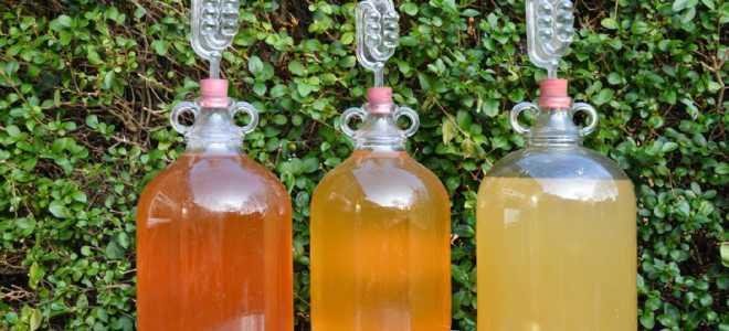 Сколько должна стоять брага для самогона: на сахаре, зерне, фруктах и различных дрожжах